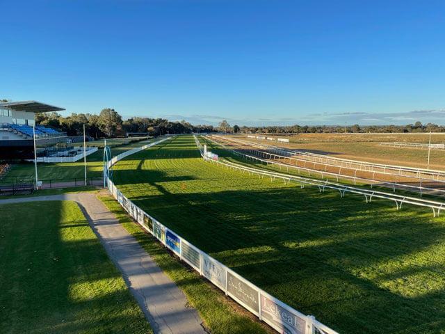 Grass horse racetrack